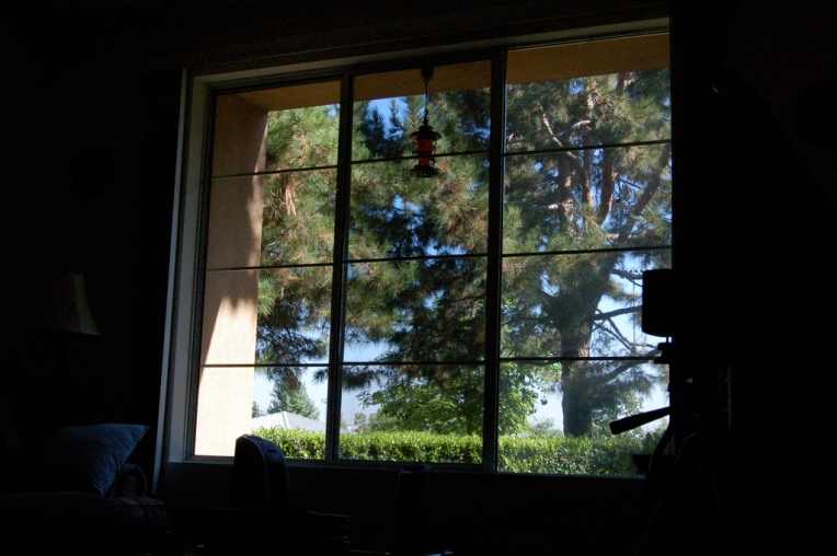 Our view from the living room_846011533_l