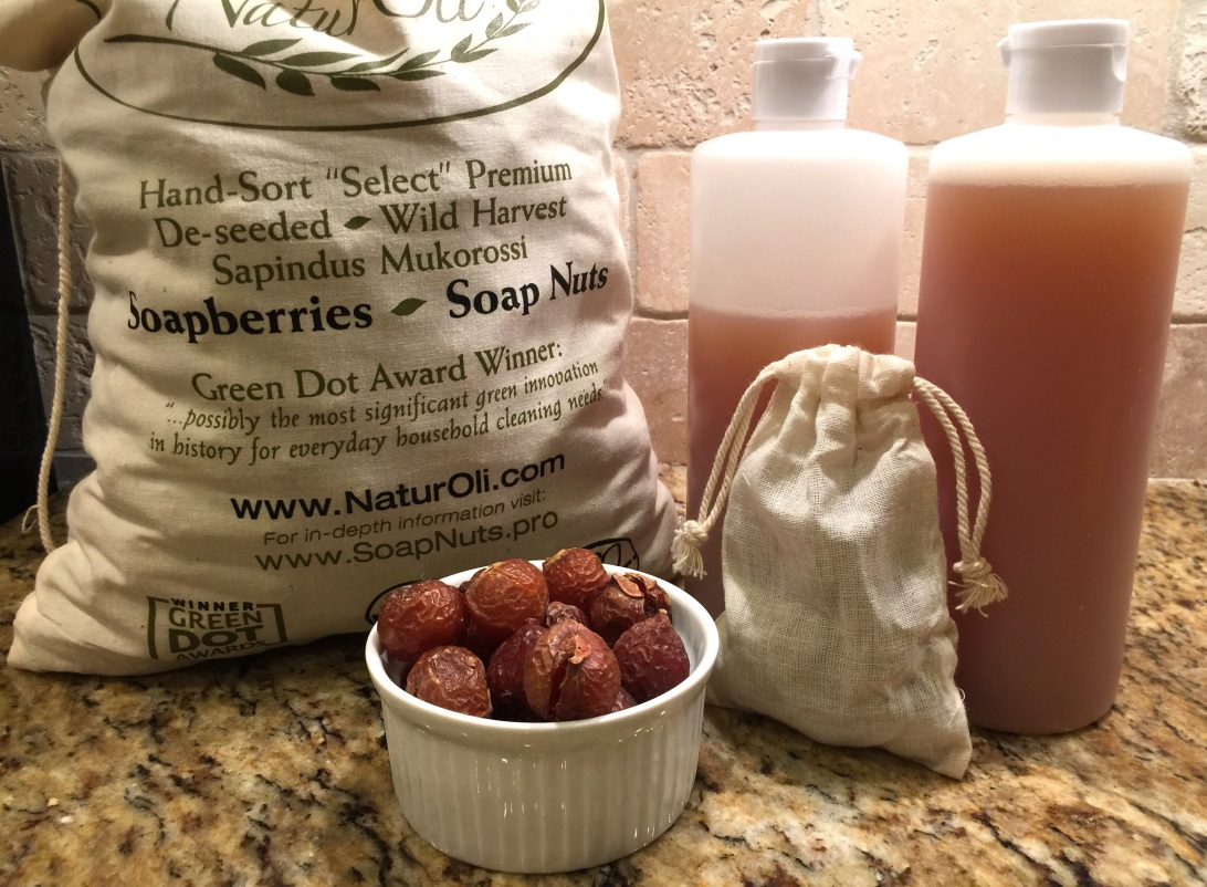 Soapberry Nuts